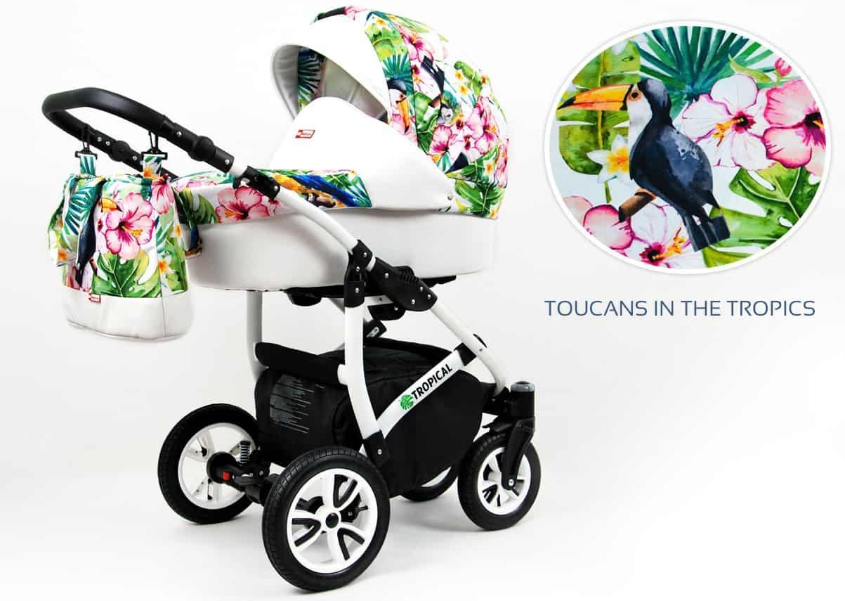 toucans in the tropics